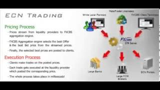 Forex Master  Ecn Forex Trading