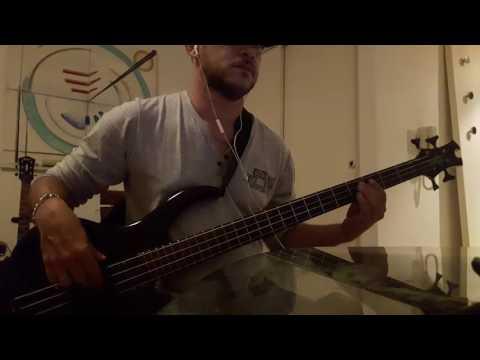 Shania Twain   Any Man of Mine   Bass Cover