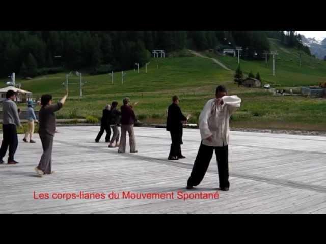 Les corps-lianes du Mouvement Spontané 3