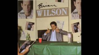 Watch Brian Wilson Someone To Love video