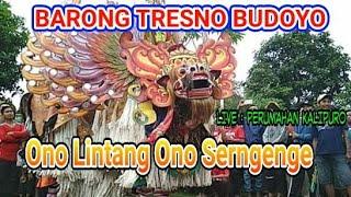 Ono Lintang Ono Serngenge.Barong Tresno Budoyo Gombeng Sari.live kalipuro