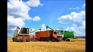 Комбайнёры трактористы