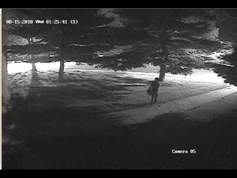 Surveillance video outside Illini Bluffs High School