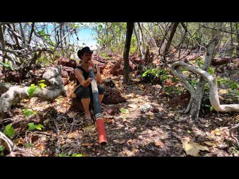 Djalu Gurruwiwi test - Arnhem Land