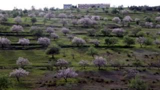 Download Video Khalid Izri - Ghari thamoath inu MP3 3GP MP4