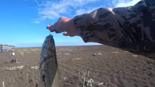 Сахалин рыбалка на Птичьем озере