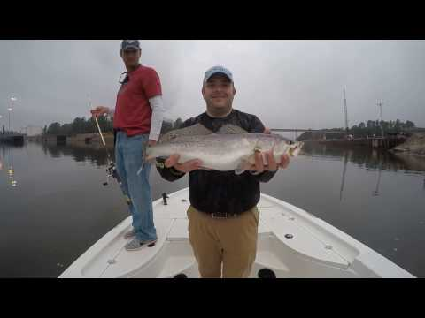Catching speckled trout in Theodore Industrial Canal