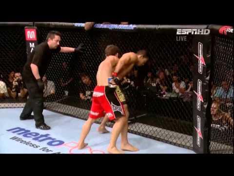 MMA Striking Highlights