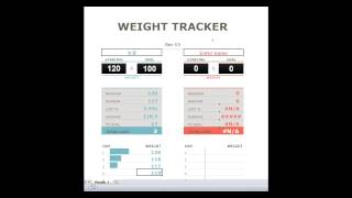 A downloadable Excel file to track your weight loss goals.