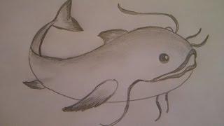 КАК НАРИСОВАТЬ РЫБУ СОМА(очень просто, для начинающих)(Здравствуйте! Предлагаю вашему вниманию видеоролик, где я показываю, как очень просто нарисовать рыбку..., 2014-12-21T06:46:57.000Z)