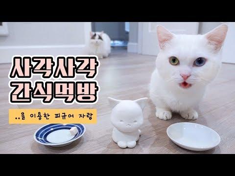 사각사각 고양이 간식먹방 🍰 을 이용한 꼬부기 피규어 자랑!