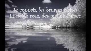 L'Oiseau ~ Vox Angeli from Belle & Sébastien (paroles/lyrics)