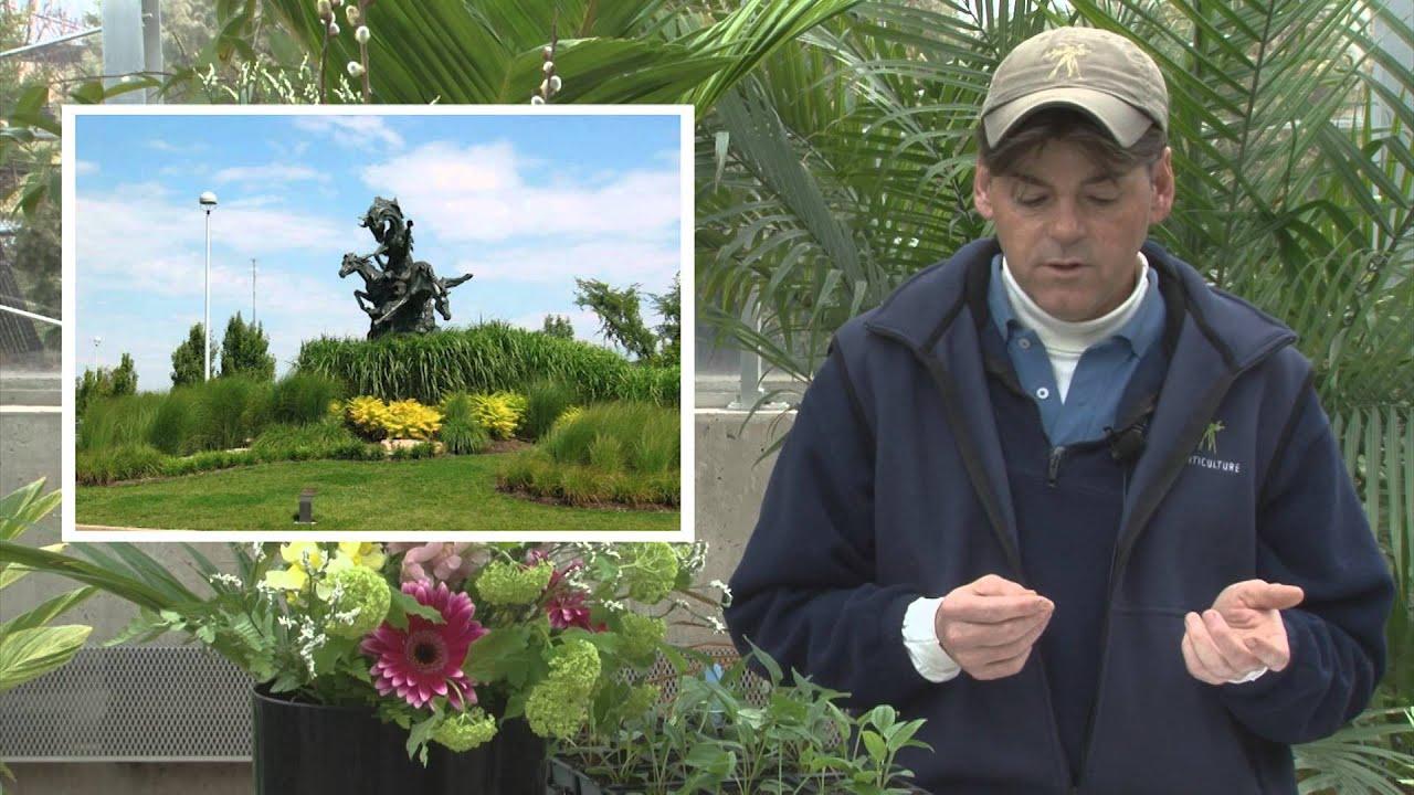 Annuals Vs Perennials Meijer Gardens Gardening Tips Youtube