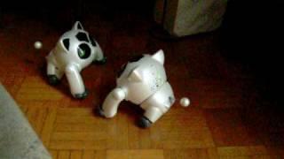 подвійний БН-1 демо - робота-вихованця Бандай, схожі на