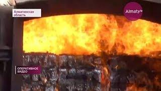 75 тыс. пачек контрафактных сигарет уничтожили алматинские приставы (08.02.18)