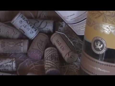 Viva Armenian wine