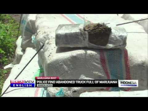 Aceh Police Discover Abandoned Truck Packed With Marijuana