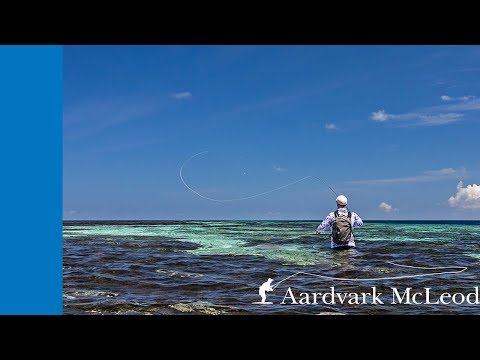 Top Ten Casting Techniques For Fly Fishing In Saltwater
