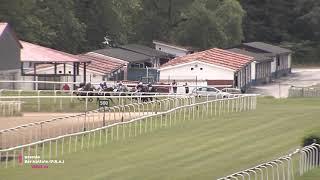 Vidéo de la course PMU PREMIO BAR APITXIN