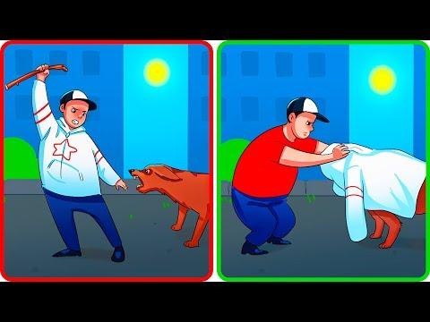 Was Du Tun Solltest, Wenn Dich Ein Hund Angreift