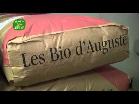 Obongoo : une boulangerie bio artisanale en filière courte