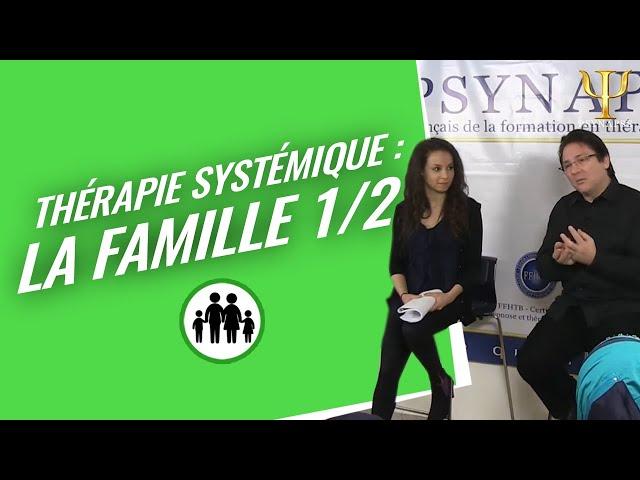 Formation Thérapie Systémique Psynapse : La Constitution de l'idée de Famille.