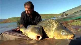 K-Karp - Carp Fishing TV - Tecniche di Pesca - Carpe Africane
