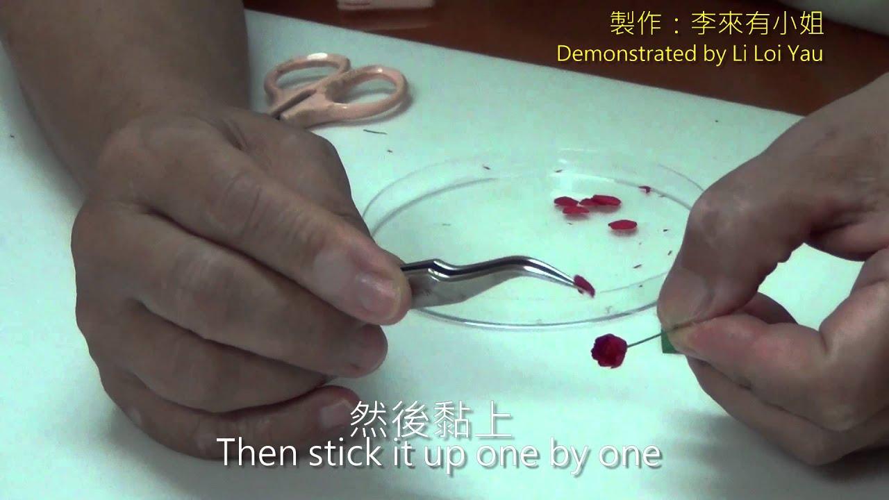 Video How To Make Miniature Rose Models By Li Loi Yau