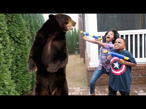 Thumbnail: Bad Baby Bear Stalker ATTACKS Shasha and Shiloh - Onyx Kids