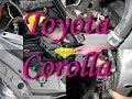 Замена охлаждающей жидкости антифриза на Toyota Corolla mp3