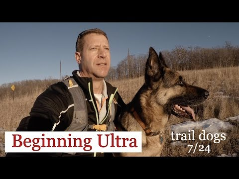 Ultra and trail running with your dog