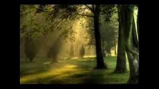 Hanya Nyanyian - S.Effendi Mp3