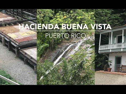 Ponce Puerto Rico! Tour the Hacienda Buena Vista Coffee Plantation