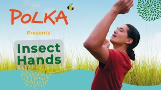 Trailer: Polka Theatre presents Insect Hands