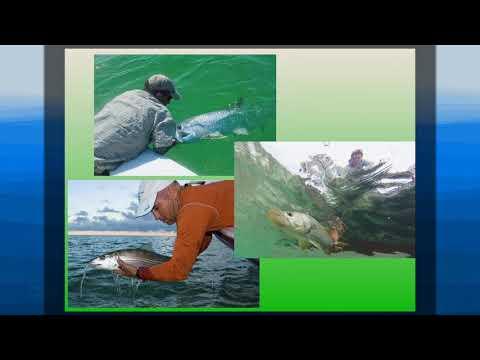 Aaron ADAMS 1/24/18 Linking Fish, Habitats, and Conservation