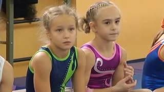 Новости. Чемпионат области по спортивной гимнастике