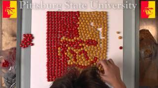 Pitt State Logo numy nums!?!
