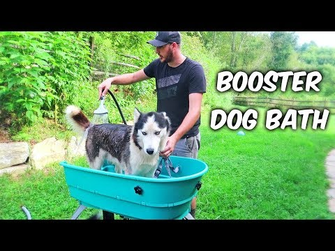 Home Pet Spa or Booster Dog Bath