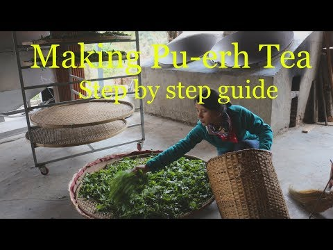 Pu-erh Tea Processing