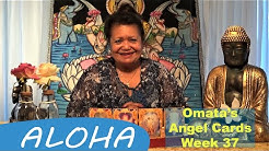 Week 37 • Omata's Angel Cards