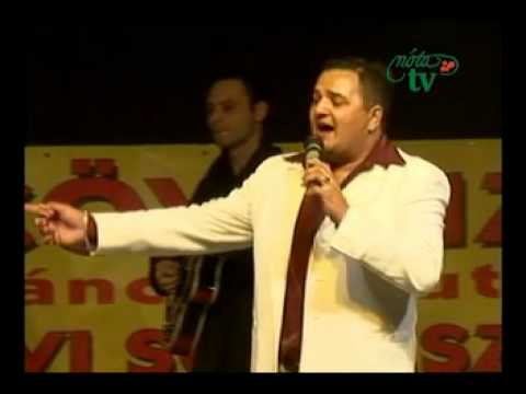 Rigó Jancsi Roma Mix ...és a Tűz Rózsák  Kecel 2011 Pertu Parti