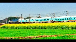 BEAUTIFUL Gorakhpur Humsafar Express Speeding Behind WDP-4D Locomotive (110kph) | Indian Railways!