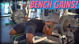 Bench Has NEVER Felt BETTER