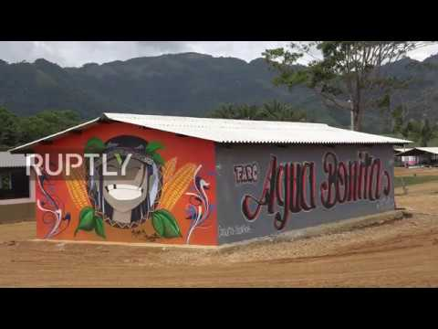 Colombia: Ex-FARC militants swap weapons for farm tools at rural commune