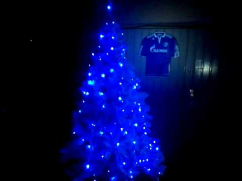 Schalke Tannenbaum.Der Schönste Weihnachtsbaum Vor Dem Kiosk Am Starenkasten