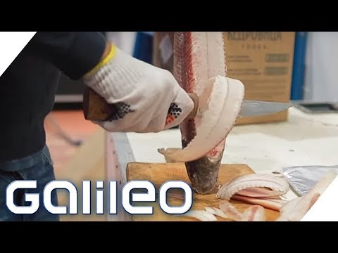 Stroganina: Das sibirische Sushi   Galileo   ProSieben