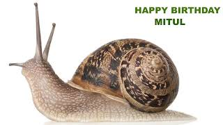 Mitul  Animals & Animales - Happy Birthday