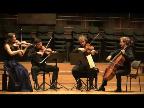 """L. Janacek  String Quartet No 1 """"Kreutzer Sonata"""" 2 Mov. Eliot Quartett"""