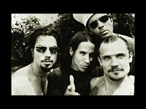 Red Hot Chili Peppers - Live in Rotterdam, Netherlands | 16th October 1995