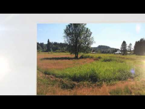 Home for Sale Vernonia OR: 17370 Keasey Road